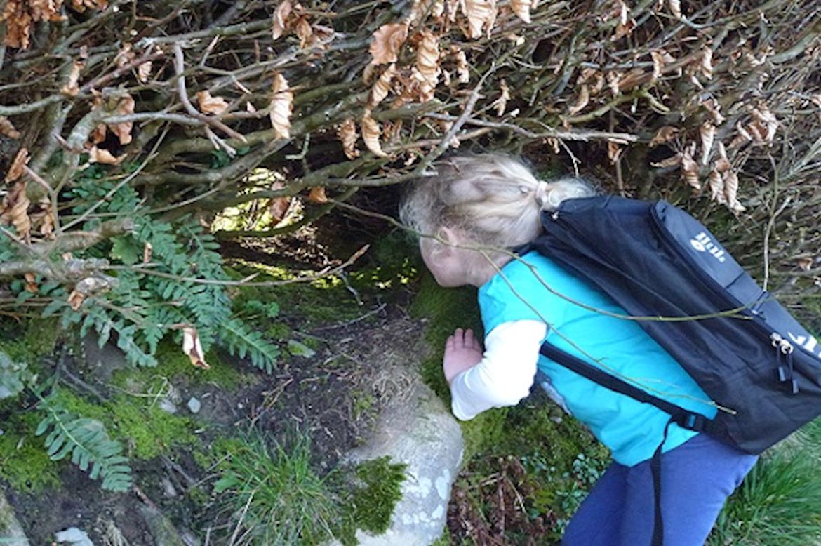 Little girl with a discovery backpack looking through a brush